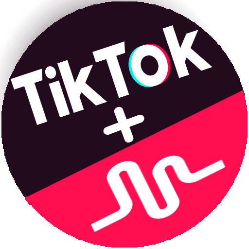 What is Tik Tok ? Explained how this app musically changed